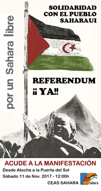 referendum sahara